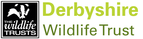 Derbyshire Wildlife Trust Logo