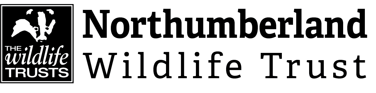 Northumberland Wildlife Trust Logo