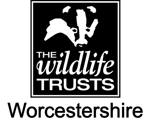Worcestershire Wildlife Trust Logo